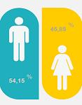 icone com dados estatísticos sobre género