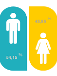 Perfil de género
